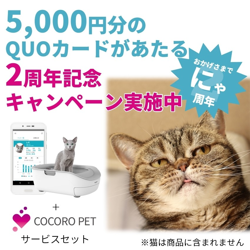 ≪キャンペーン実施中≫【セット商品】猫用システムトイレ型「ペットケアモニター」